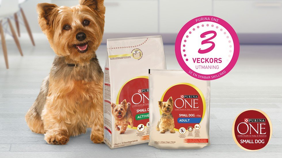 Purina ONE Small dog