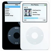 Apple Ipod (30 gb)